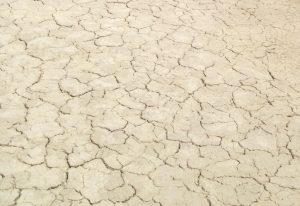 Dry, cracked mud flat texture